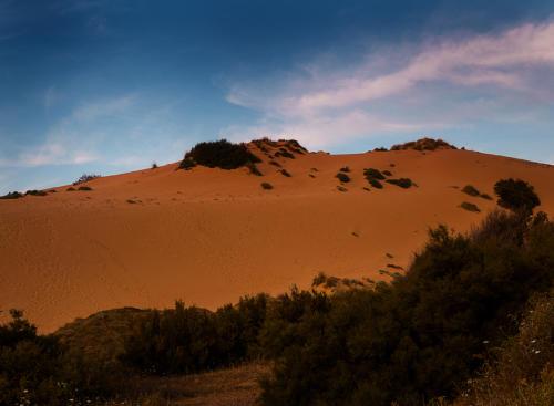 Alba Dune Torre dei Corsari